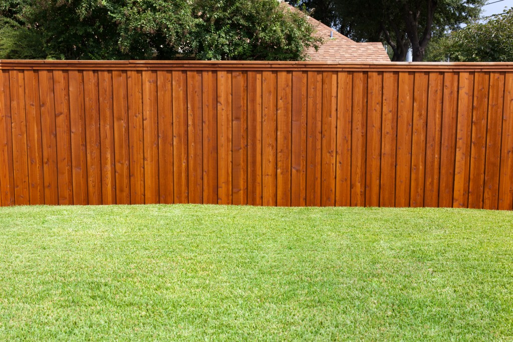 Make Your Wood Fences Last Longer with These Four Preservative Treatment Options