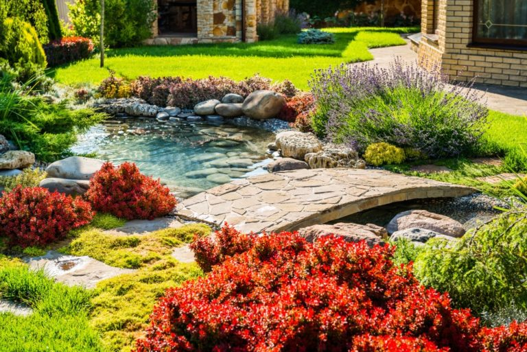 home garden with man-made pond