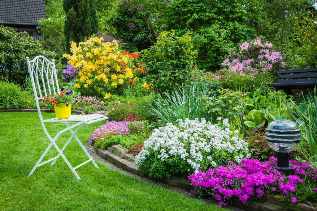 Garden full of different kinds of flowers
